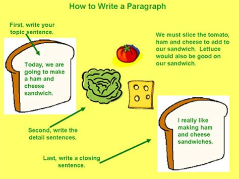 Argumentative essay on college success